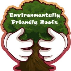 Tips For Making Your Roof More Environmentally Friendly